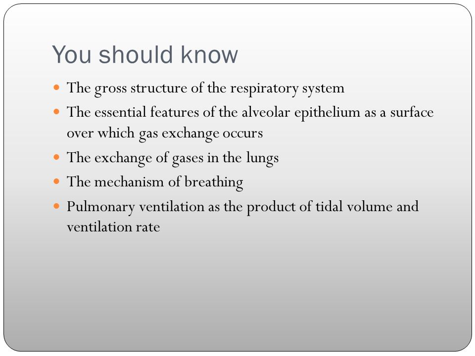 You should know The gross structure of the respiratory system The essential features of the alveolar epithelium as a surface over which gas exchange occurs The exchange of gases in the lungs The mechanism of breathing Pulmonary ventilation as the product of tidal volume and ventilation rate