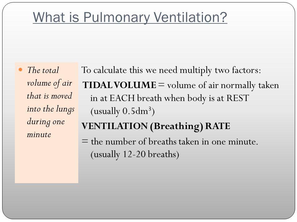 What is Pulmonary Ventilation.