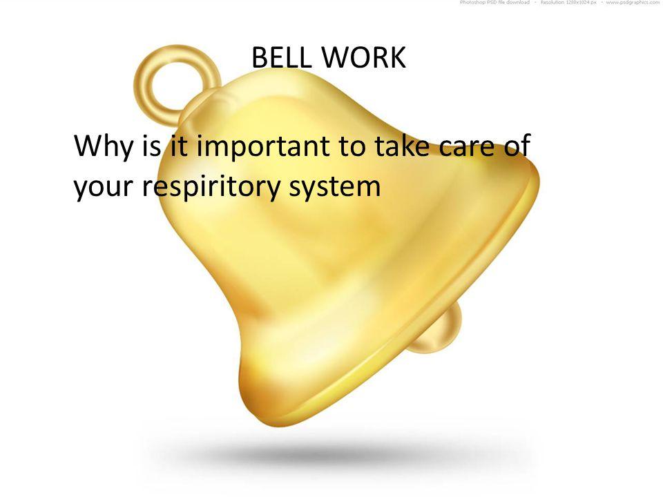 BODY SYSTEMS RESPIRATORY SYSTEM