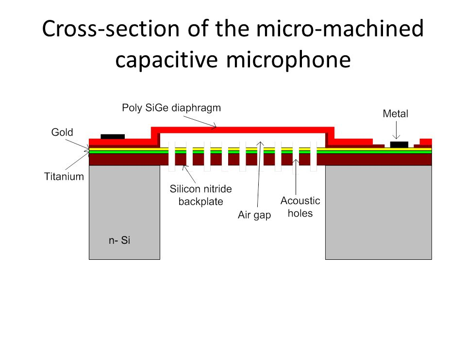 Cross-section of the micro-machined capacitive microphone