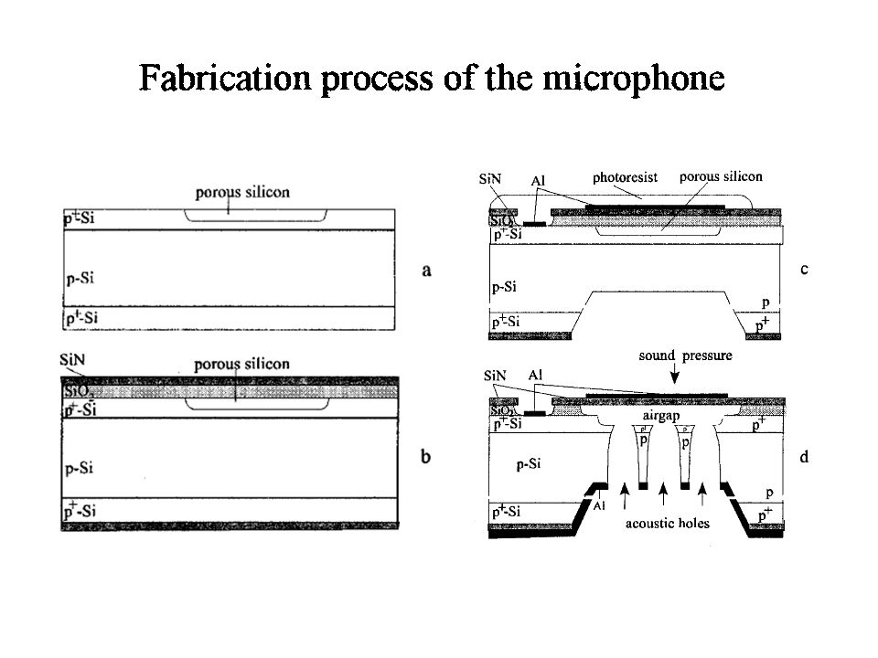 Cross-section of the microphone chip