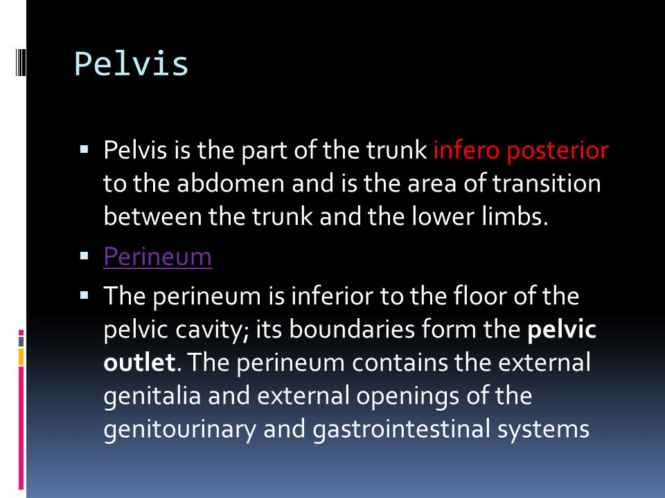 Pelvis  Pelvis is the part of the trunk infero posterior to the abdomen and is the area of transition between the trunk and the lower limbs.  Perine