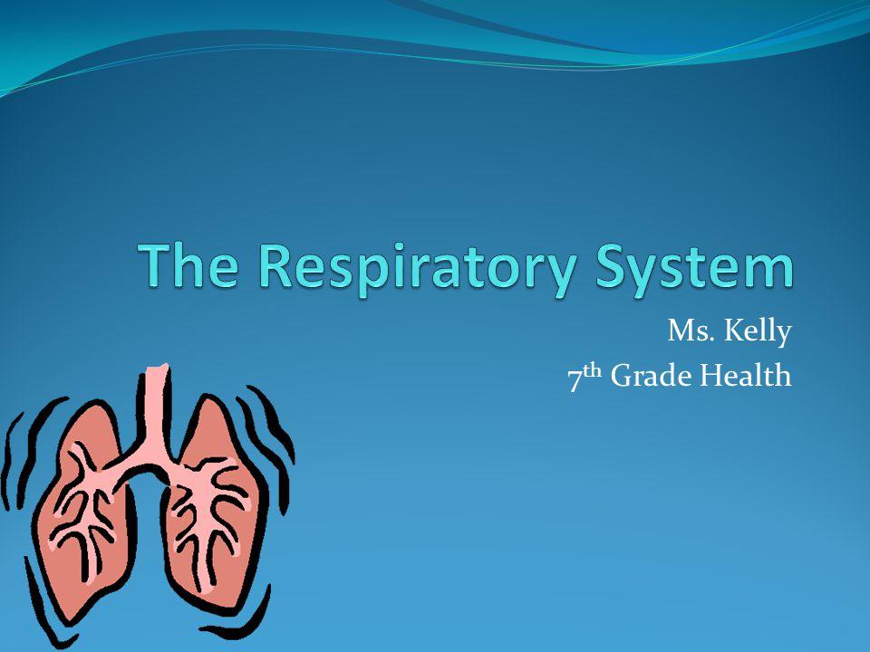 Ms. Kelly 7 th Grade Health
