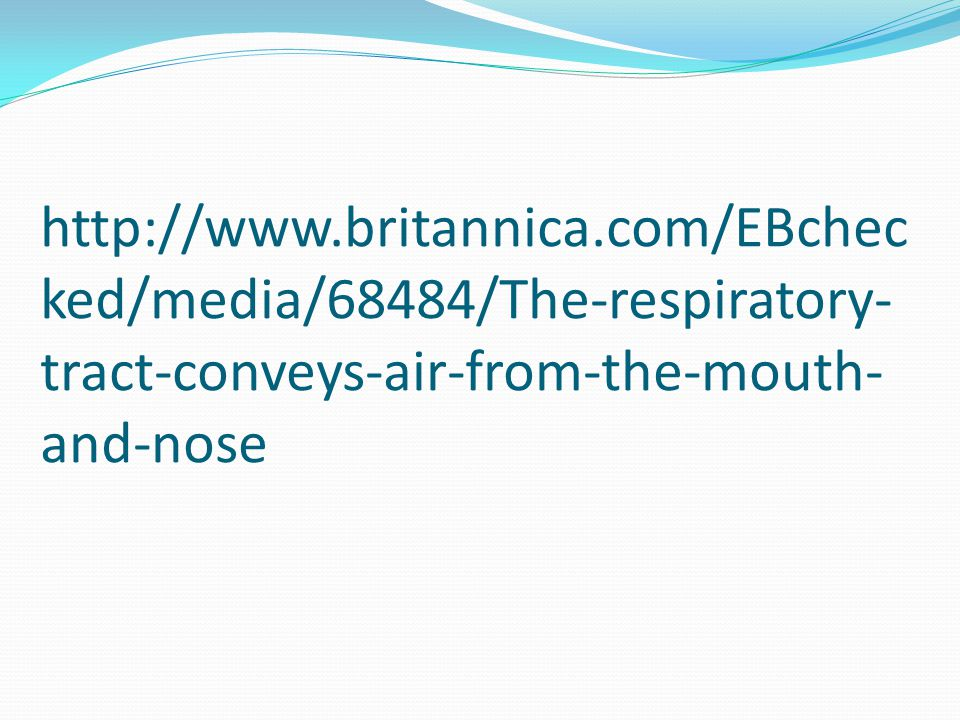 http://www.britannica.com/EBchec ked/media/68484/The-respiratory- tract-conveys-air-from-the-mouth- and-nose