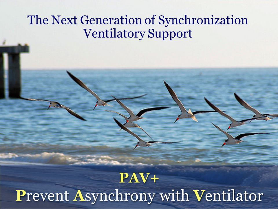 Ventilator Support is proportional to: Instantaneous Effort (Pmus) Pulmonary Mechanics (Resistance, Compliance) Ventilator Support is proportional to: Instantaneous Effort (Pmus) Pulmonary Mechanics (Resistance, Compliance)