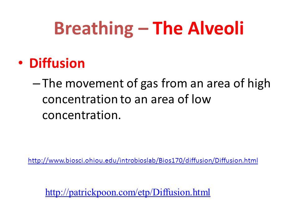 Air Composition Inhaled air  Nitrogen N 2 – 79%  Oxygen O 2 – 20%  CO 2 – 0.04%  Others - 0.96% Exhaled air  Nitrogen N 2 – 79%  Oxygen O 2 – 16%  CO 2 – 4%  Others - 1%