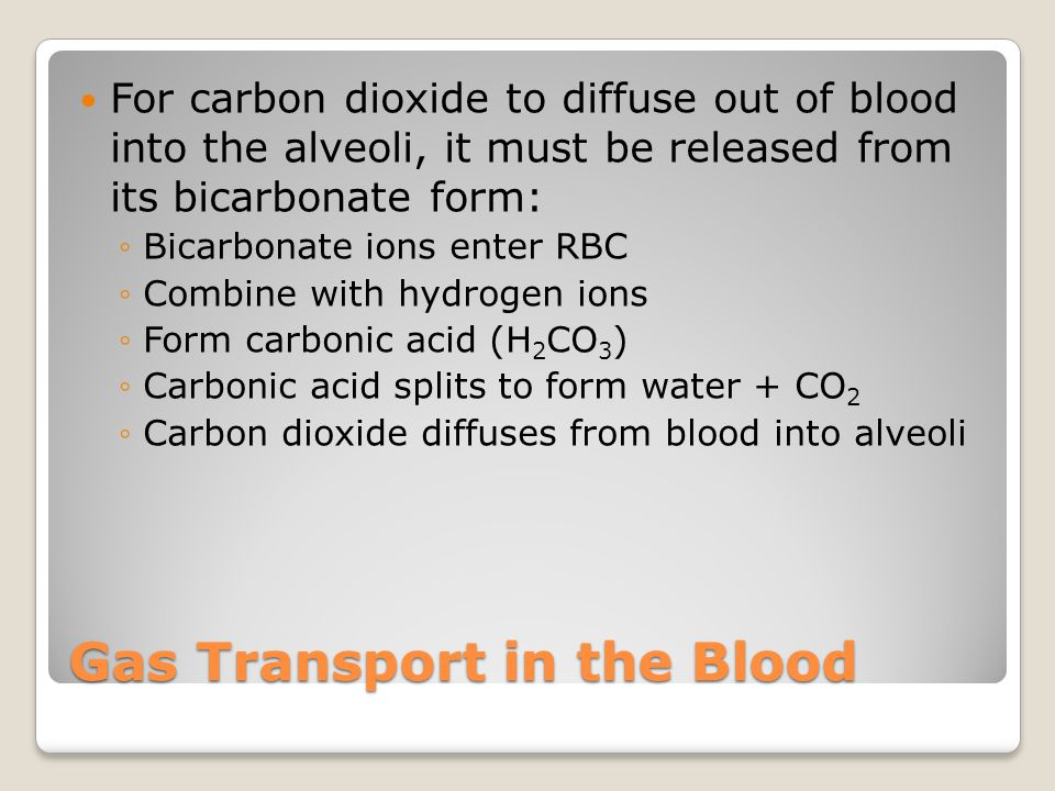 Gas Transport in the Blood For carbon dioxide to diffuse out of blood into the alveoli, it must be released from its bicarbonate form: ◦Bicarbonate io