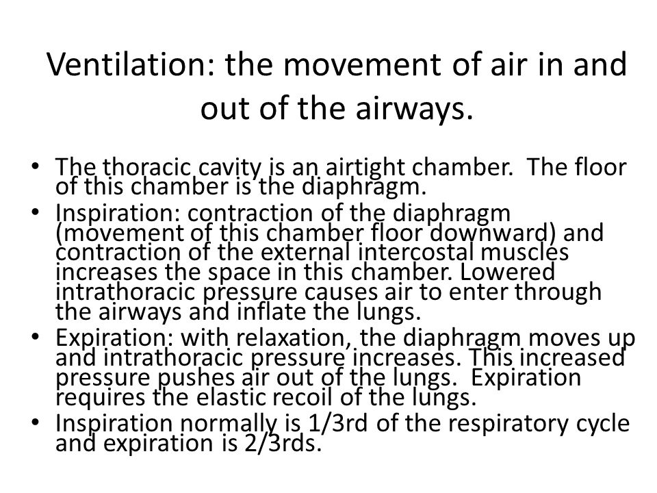 Ventilation: the movement of air in and out of the airways.