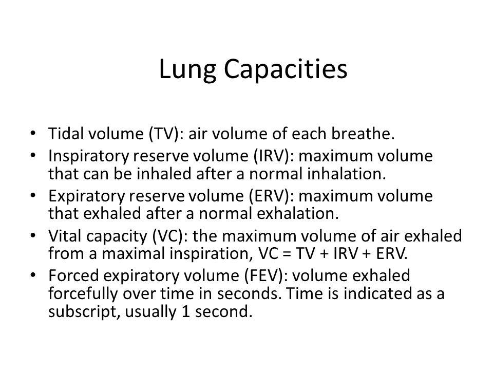 Lung Capacities Tidal volume (TV): air volume of each breathe.
