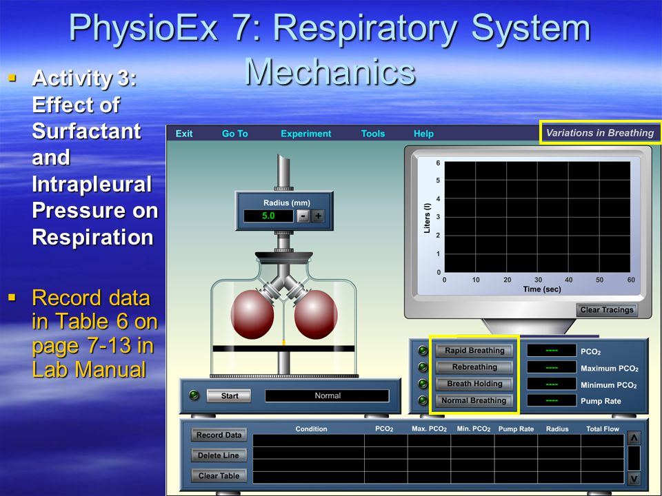 PhysioEx 7: Respiratory System Mechanics  Activity 3: Effect of Surfactant and Intrapleural Pressure on Respiration  Record data in Table 6 on page 7-13 in Lab Manual