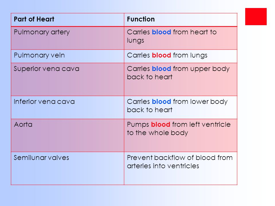 Blood Pressure -Is the hydrostatic force exerted against the wall of a blood vessel -Drives blood from the heart to the capillary beds -Much greater in arteries than in veins and is greatest during systole.