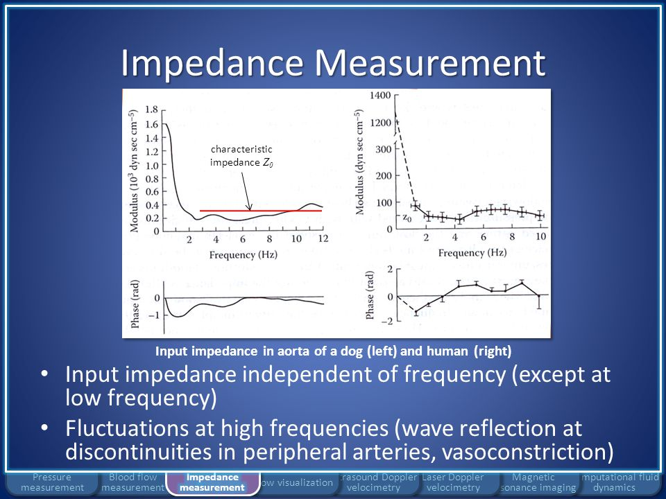 Impedance Measurement Computational fluid dynamics Magnetic resonance imaging Laser Doppler velocimetry Ultrasound Doppler velocimetry Flow visualization Blood flow measurement Pressure measurement Input impedance in aorta of a dog (left) and human (right) Fluctuation characterization: characteristic impedance Z 0
