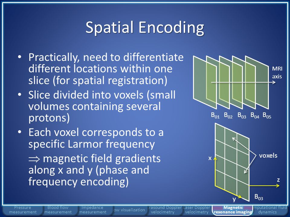 Laser Doppler velocimetry Ultrasound Doppler velocimetry Flow visualization Impedance measurement Spatial Encoding Computational fluid dynamics Blood flow measurement Pressure measurement Phase encoding step – Differentiate Larmor frequency in each row of voxels for short period of time – At end of step: all rows return to original frequency – Each row of voxels now includes small phase difference with respect to the next and previous rows B 01 B 03 B 04 B 05 B 02 MRI axis B 03 z x y voxels