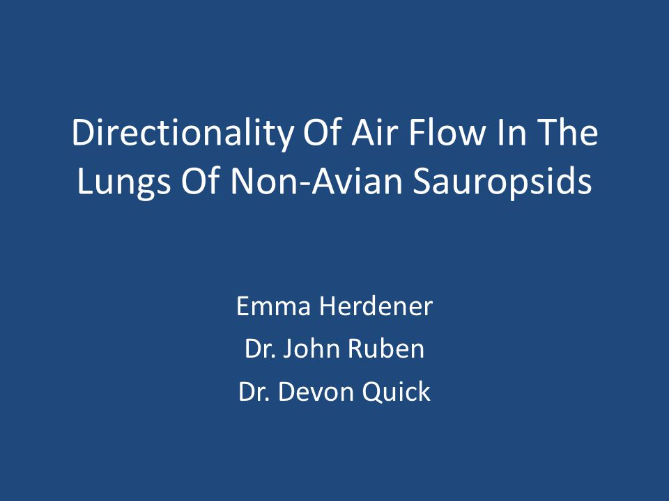 Directionality Of Air Flow In The Lungs Of Non-Avian Sauropsids Emma Herdener Dr. John Ruben Dr. Devon Quick