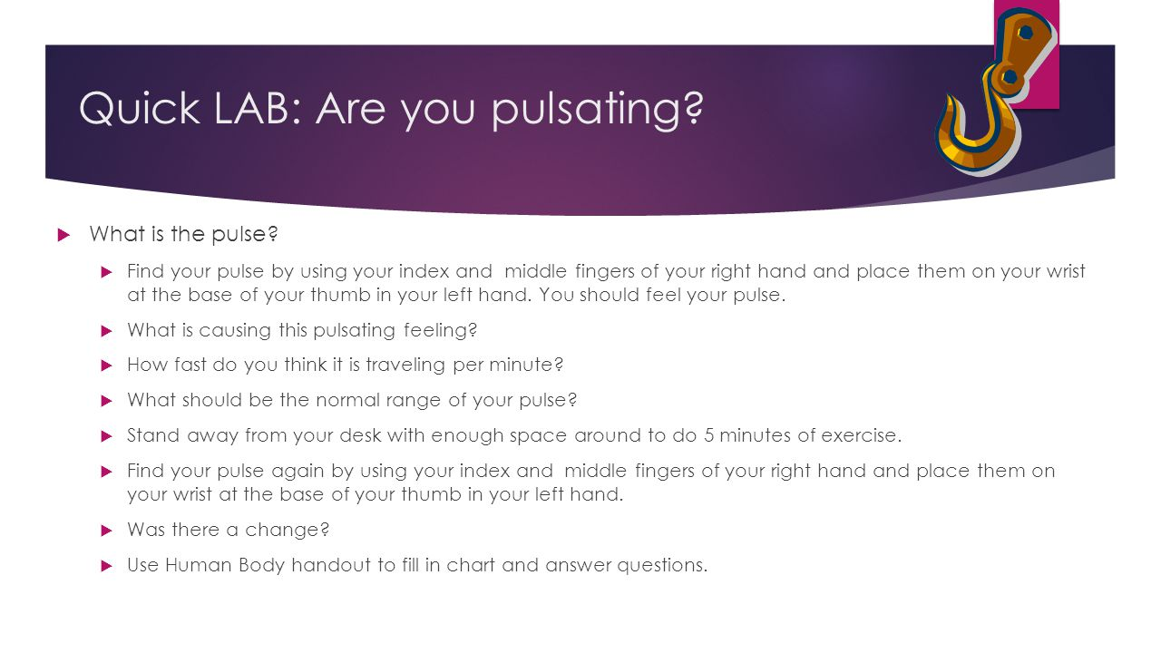 Quick LAB: Are you pulsating?  What is the pulse?  Find your pulse by using your index and middle fingers of your right hand and place them on your
