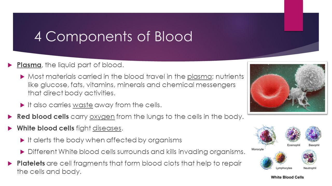 4 Components of Blood  Plasma, the liquid part of blood.  Most materials carried in the blood travel in the plasma; nutrients like glucose, fats, vi
