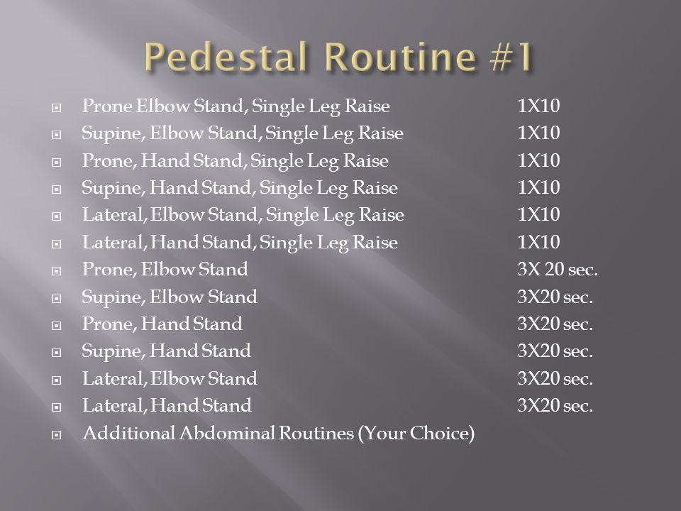  Prone Elbow Stand, Single Leg Raise1X10  Supine, Elbow Stand, Single Leg Raise1X10  Prone, Hand Stand, Single Leg Raise1X10  Supine, Hand Stand, Single Leg Raise1X10  Lateral, Elbow Stand, Single Leg Raise1X10  Lateral, Hand Stand, Single Leg Raise1X10  Prone, Elbow Stand3X 20 sec.