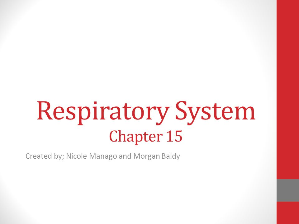 Respiratory System Chapter 15 Created by; Nicole Manago and Morgan Baldy