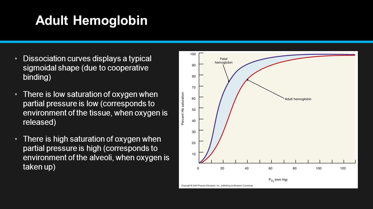 Adult Hemoglobin Dissociation curves displays a typical sigmoidal shape (due to cooperative binding) There is low saturation of oxygen when partial pressure is low (corresponds to environment of the tissue, when oxygen is released) There is high saturation of oxygen when partial pressure is high (corresponds to environment of the alveoli, when oxygen is taken up)