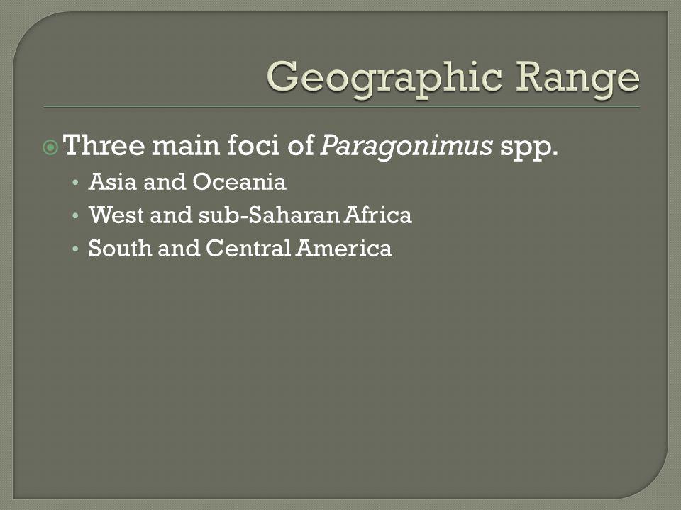 Three main foci of Paragonimus spp.