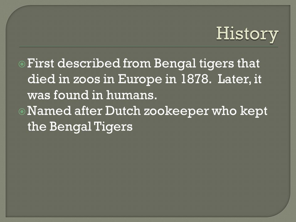  First described from Bengal tigers that died in zoos in Europe in 1878.