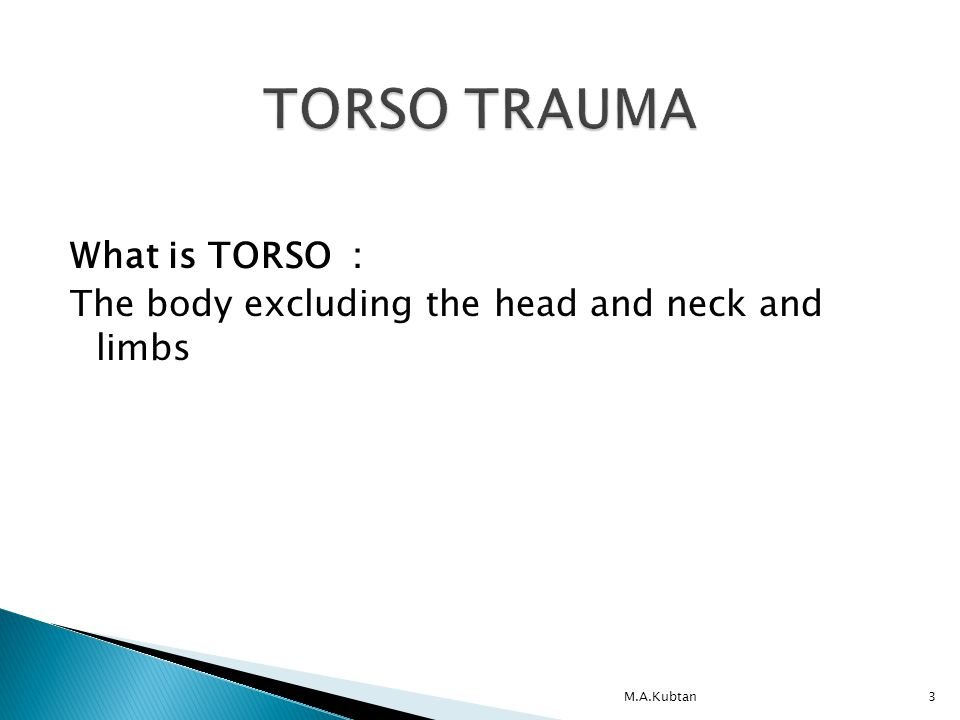 What is TORSO : The body excluding the head and neck and limbs M.A.Kubtan3