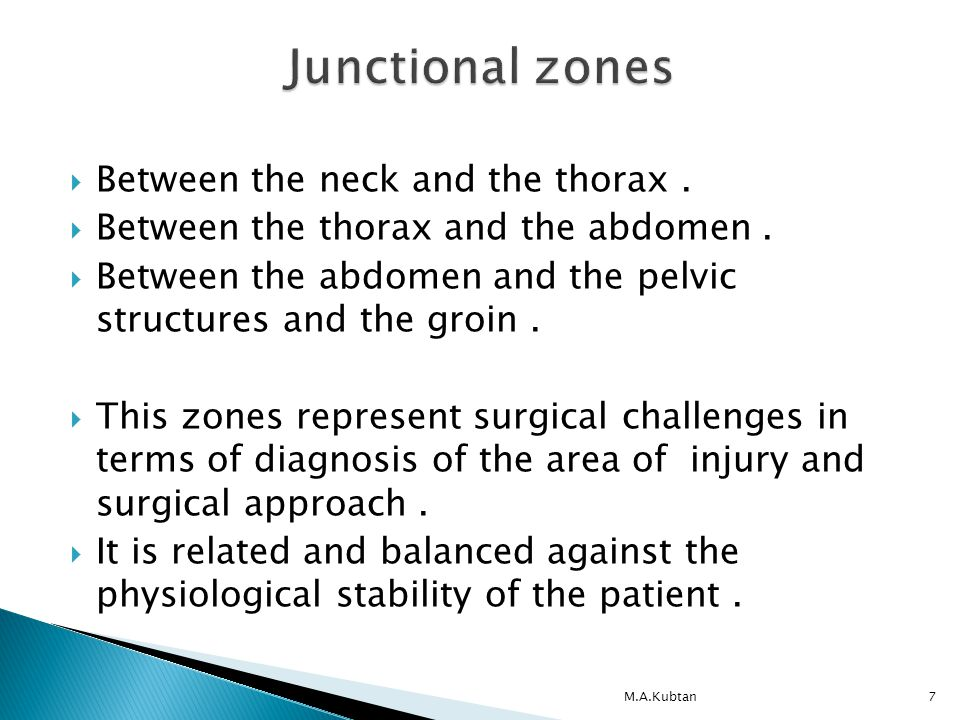  Between the neck and the thorax.  Between the thorax and the abdomen.