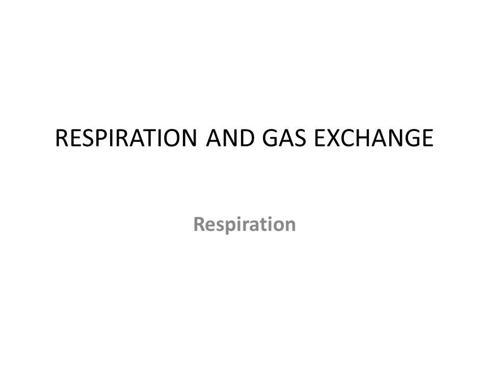 RESPIRATION AND GAS EXCHANGE Respiration