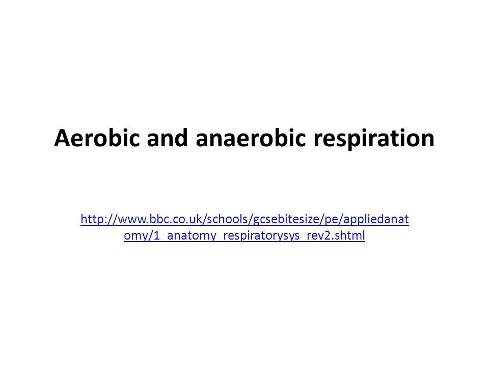 Aerobic and anaerobic respiration http://www.bbc.co.uk/schools/gcsebitesize/pe/appliedanat omy/1_anatomy_respiratorysys_rev2.shtml