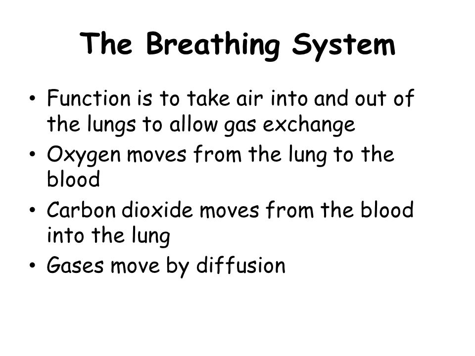 The Breathing System Function is to take air into and out of the lungs to allow gas exchange Oxygen moves from the lung to the blood Carbon dioxide mo