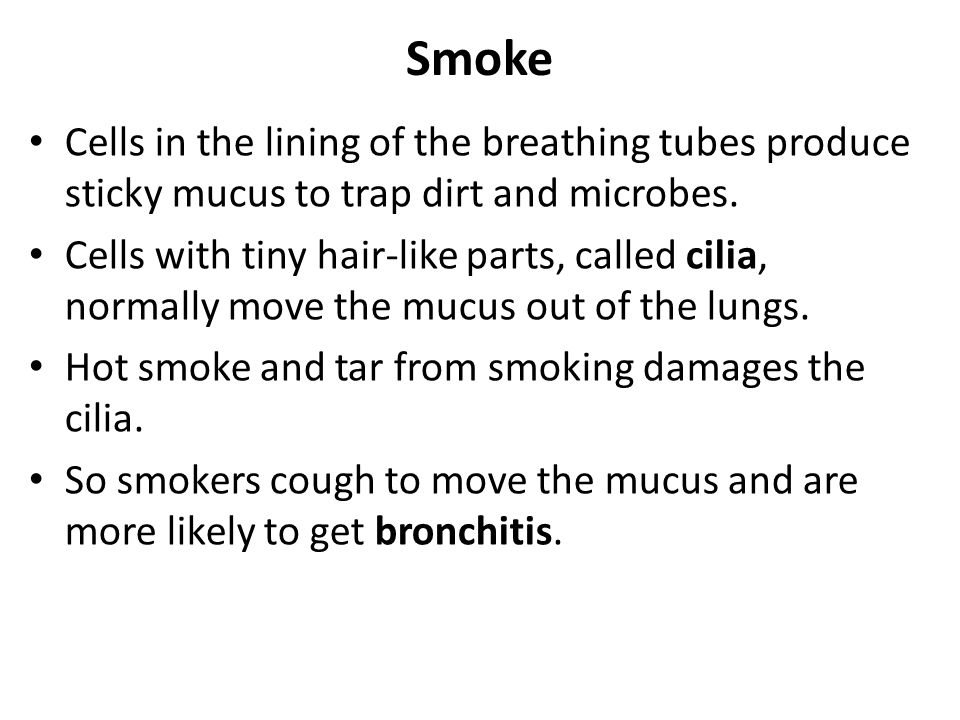 Smoke Cells in the lining of the breathing tubes produce sticky mucus to trap dirt and microbes. Cells with tiny hair-like parts, called cilia, normal