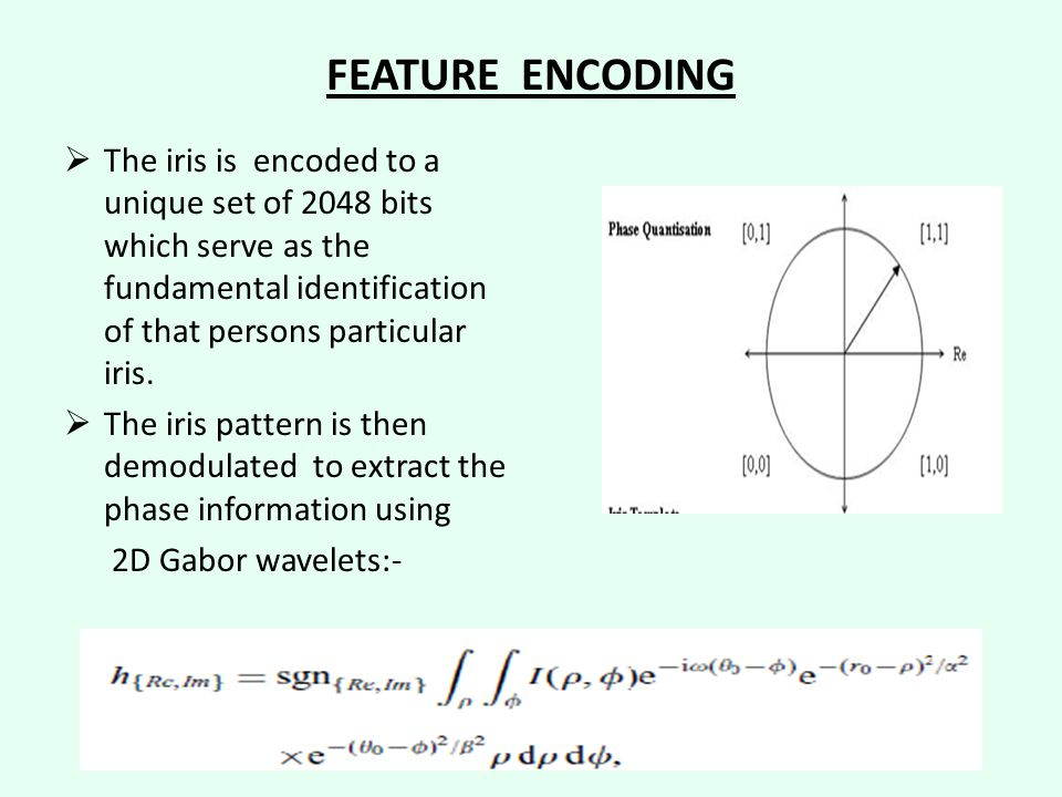 FEATURE ENCODING  The iris is encoded to a unique set of 2048 bits which serve as the fundamental identification of that persons particular iris.