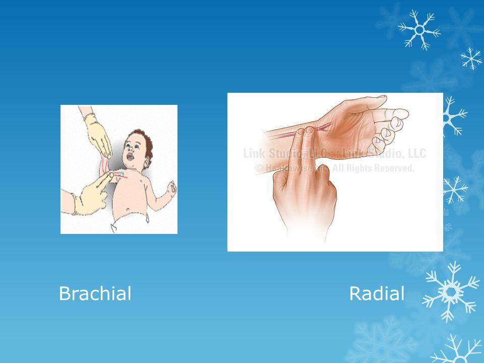 BrachialRadial