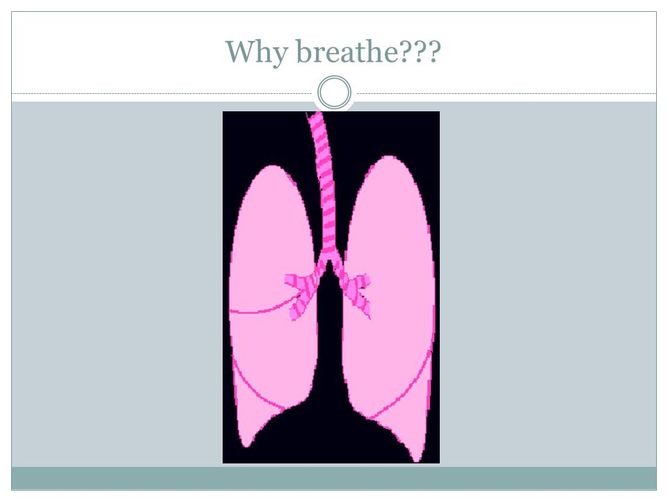 Why breathe