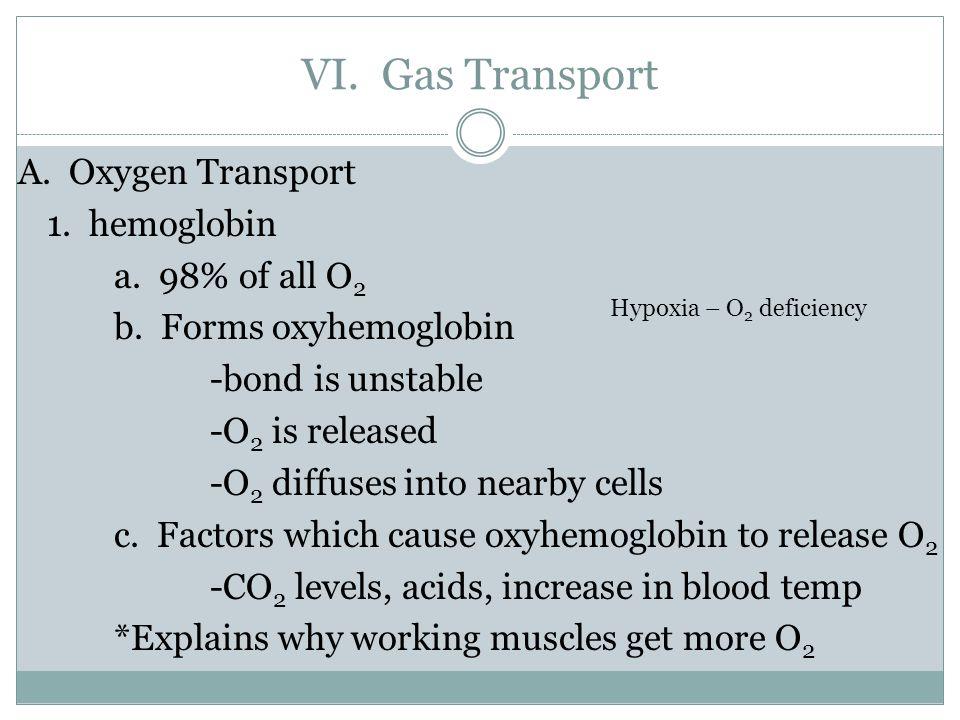 VI. Gas Transport A. Oxygen Transport 1. hemoglobin a.