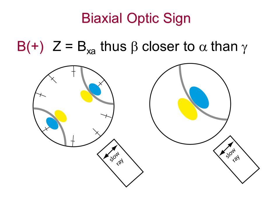 Biaxial Optic Sign B(+) B(+) Z = B xa thus  closer to  than 
