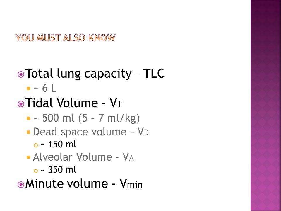  Total lung capacity – TLC  ~ 6 L  Tidal Volume – V T  ~ 500 ml (5 – 7 ml/kg)  Dead space volume – V D ~ 150 ml  Alveolar Volume – V A ~ 350 ml  Minute volume - V min