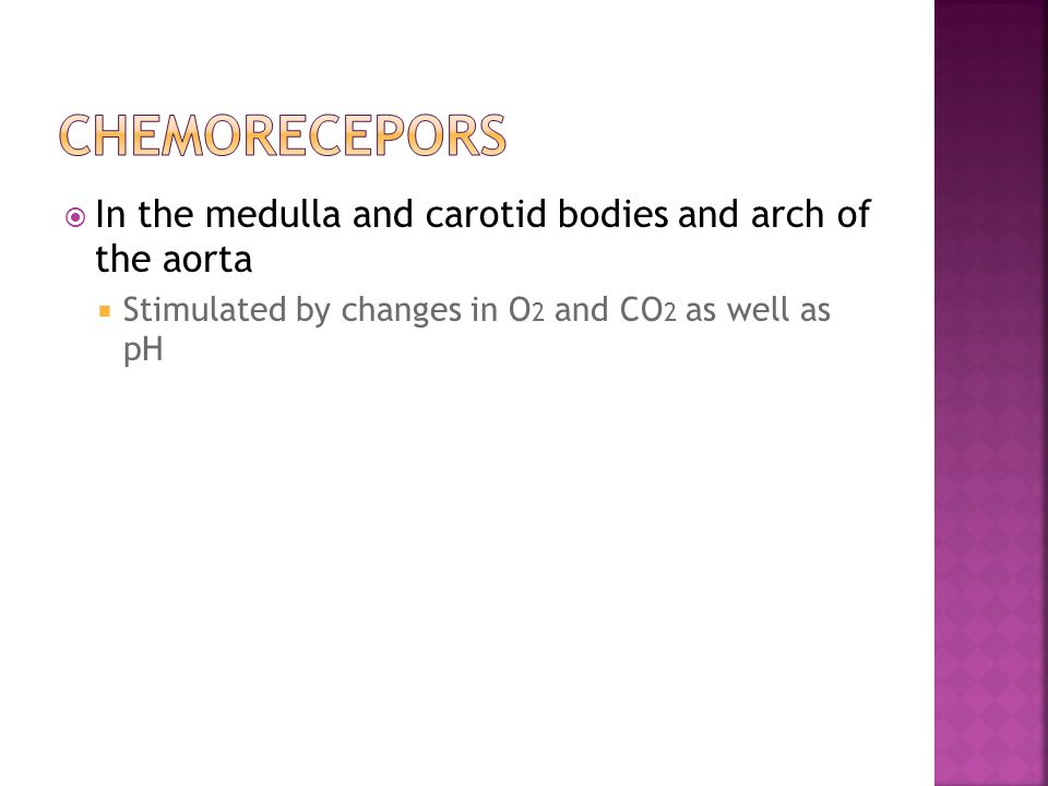  In the medulla and carotid bodies and arch of the aorta  Stimulated by changes in O 2 and CO 2 as well as pH