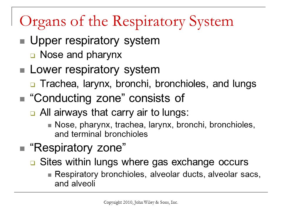 Copyright 2010, John Wiley & Sons, Inc. Organs of the Respiratory System Upper respiratory system  Nose and pharynx Lower respiratory system  Trache