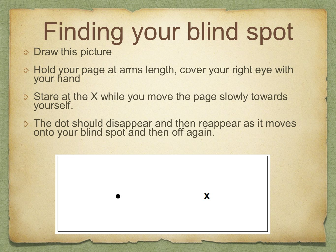Finding your blind spot Draw this picture Hold your page at arms length, cover your right eye with your hand Stare at the X while you move the page sl
