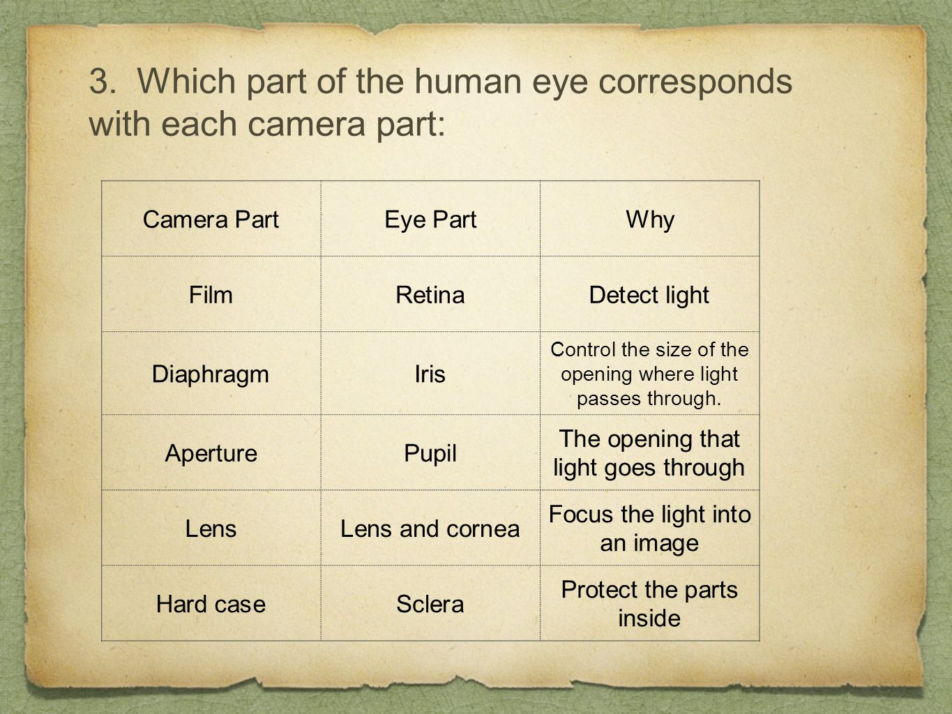 3. Which part of the human eye corresponds with each camera part: Camera PartEye PartWhy FilmRetinaDetect light DiaphragmIris Control the size of the