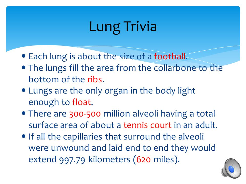 How do you Breathe?