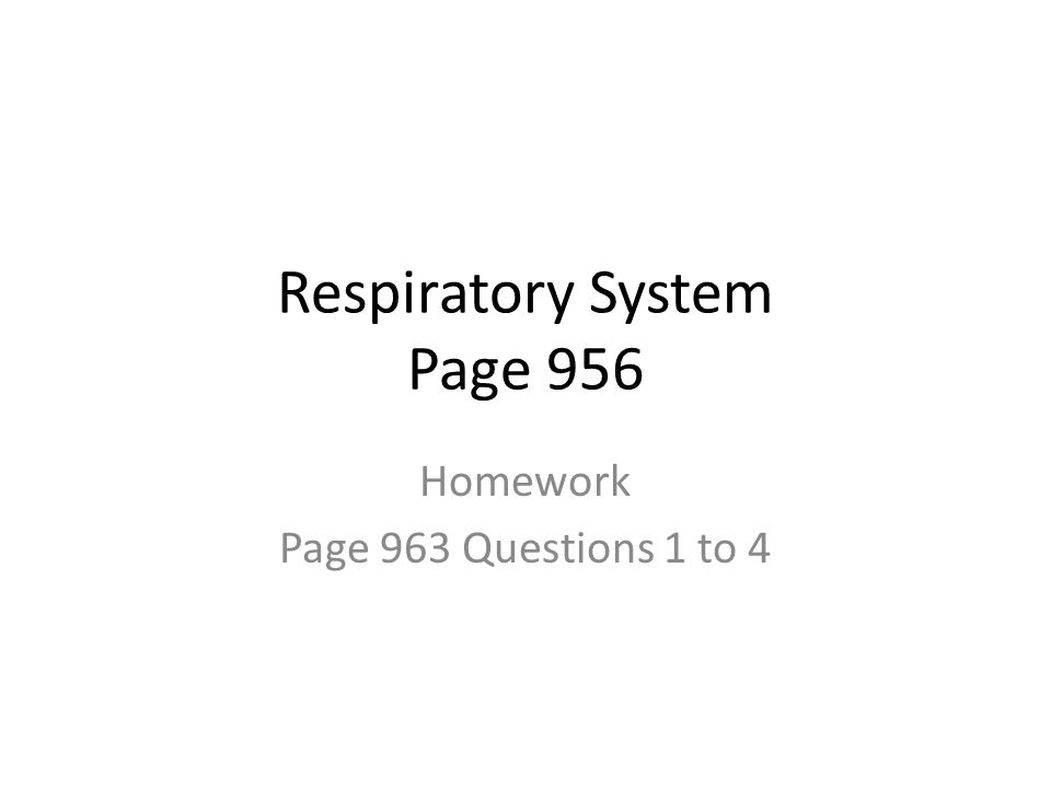 Respiratory System Page 956 Homework Page 963 Questions 1 to 4
