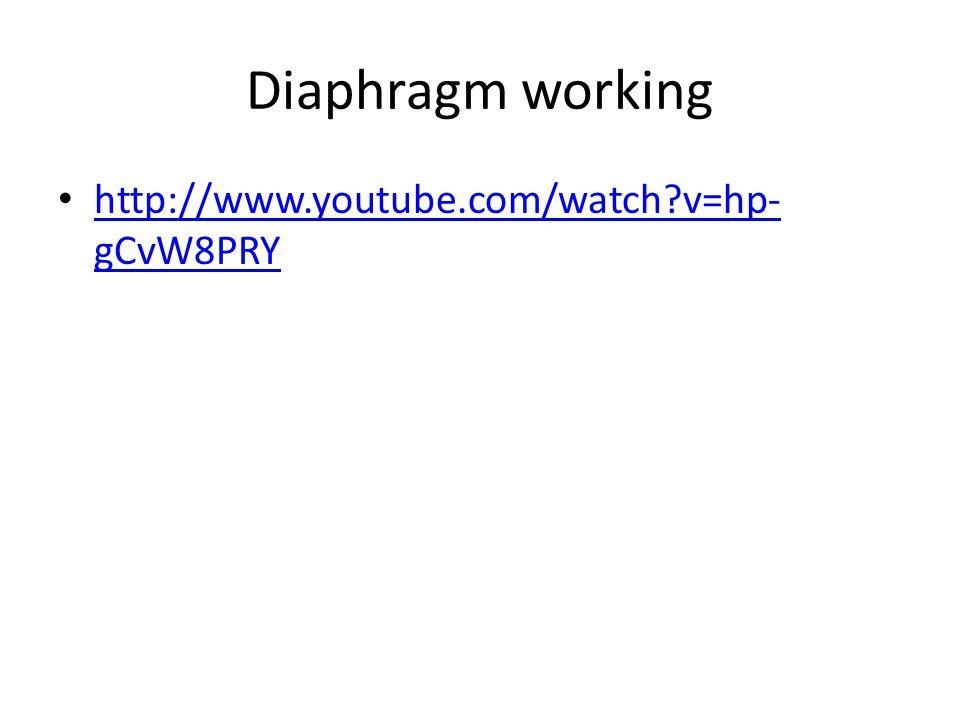 Diaphragm working http://www.youtube.com/watch?v=hp- gCvW8PRY http://www.youtube.com/watch?v=hp- gCvW8PRY