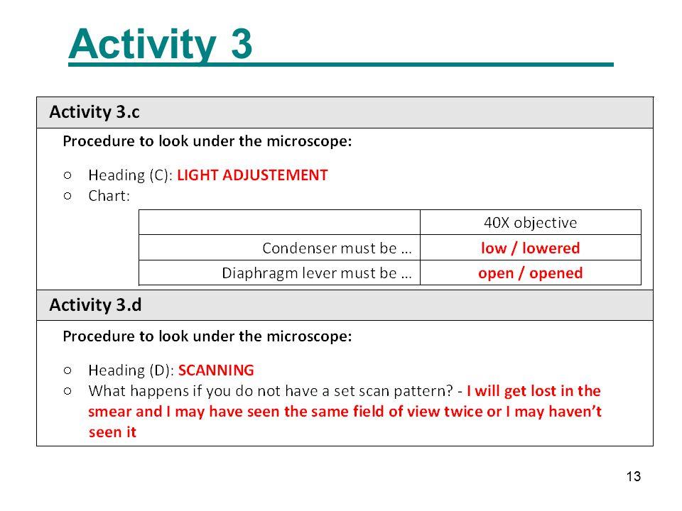 13 Activity 3