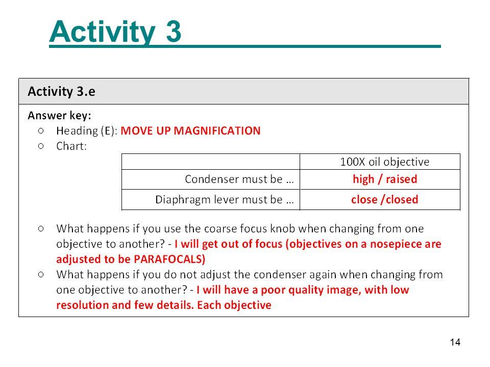 14 Activity 3
