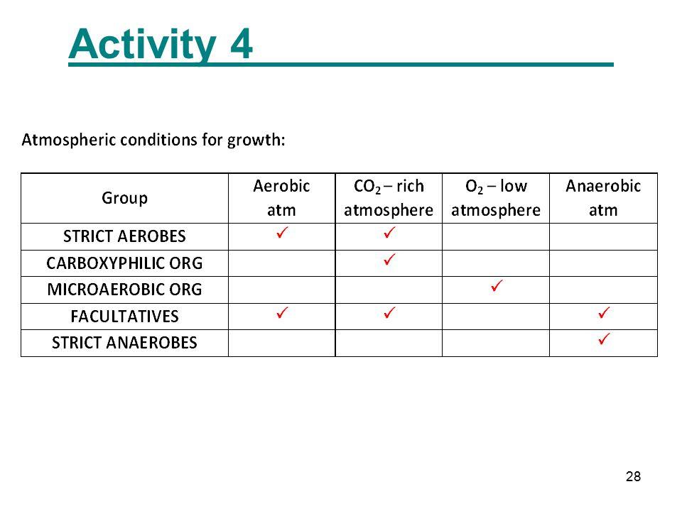 28 Activity 4