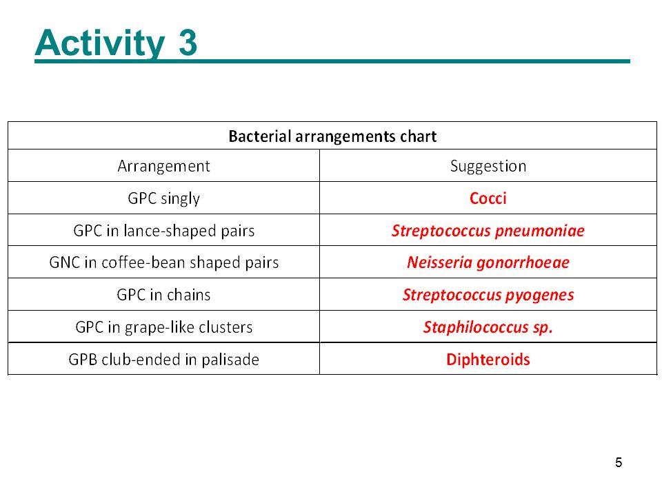 5 Activity 3