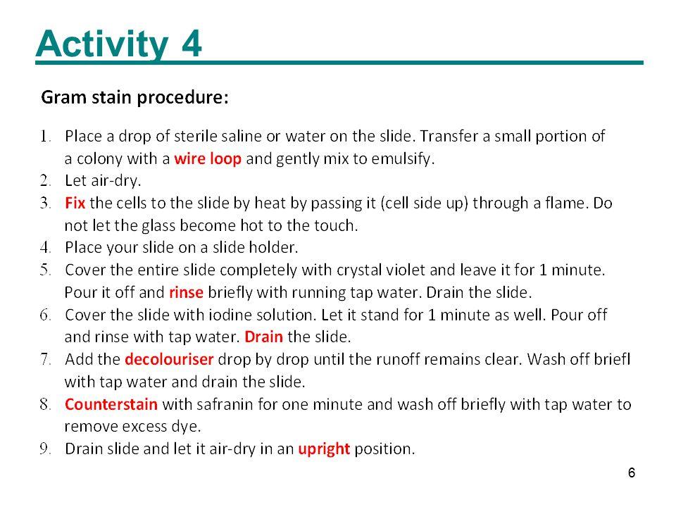 6 Activity 4