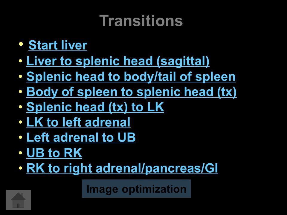 Transitions Start liver Liver to splenic head (sagittal) Splenic head to body/tail of spleen Body of spleen to splenic head (tx) Splenic head (tx) to LK LK to left adrenal Left adrenal to UB UB to RK RK to right adrenal/pancreas/GI Image optimization